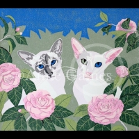 Cats and Camellias