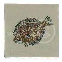 flounder-on-sand