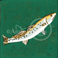 speckled-trout